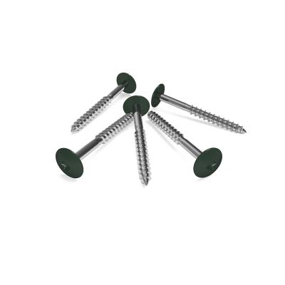 Tannengrün-RAL-6009-HPL-Schrauben
